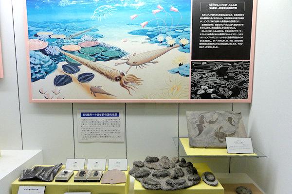 hakusan-dinosaur-2e