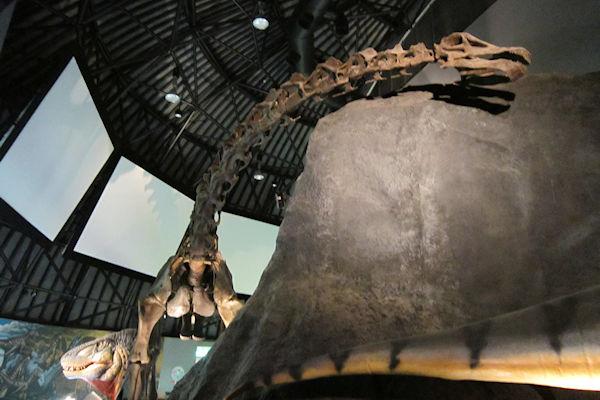 hakusan-dinosaur-2v