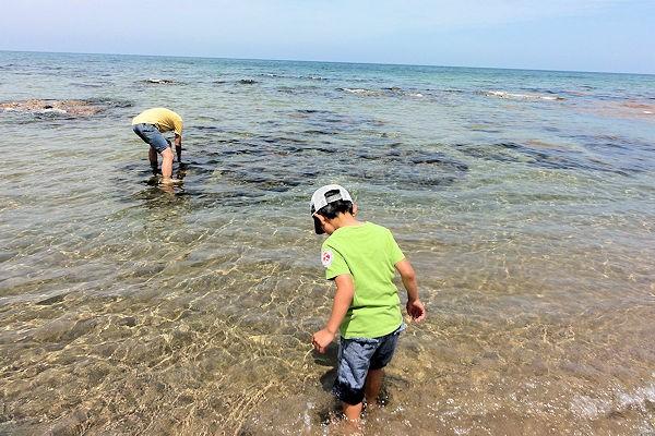 nakisuna-beach-2d