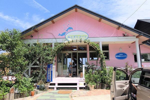 notojima-dolphin-a