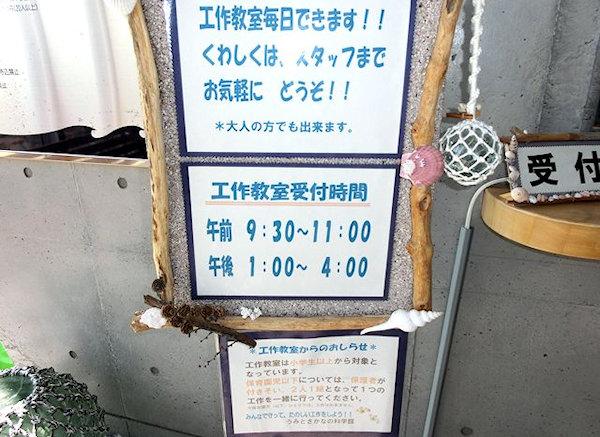 noto-sea-fish-science-1z