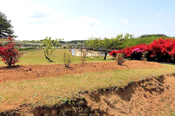 noto-botanical-gardens-1l